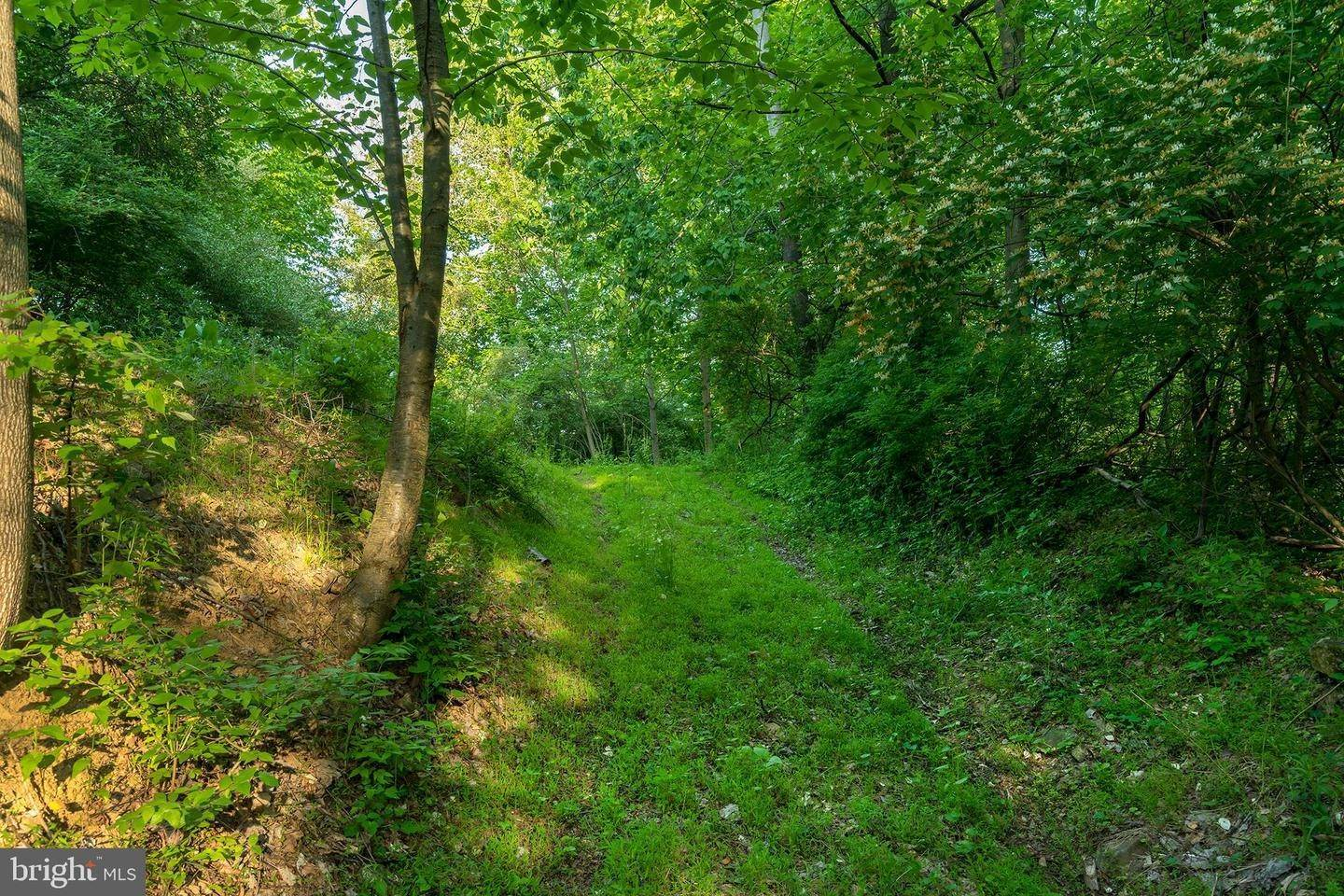 19. Residential for Sale at 1300 TEXTER MOUNTAIN Road Reinholds, Pennsylvania 17569 United States