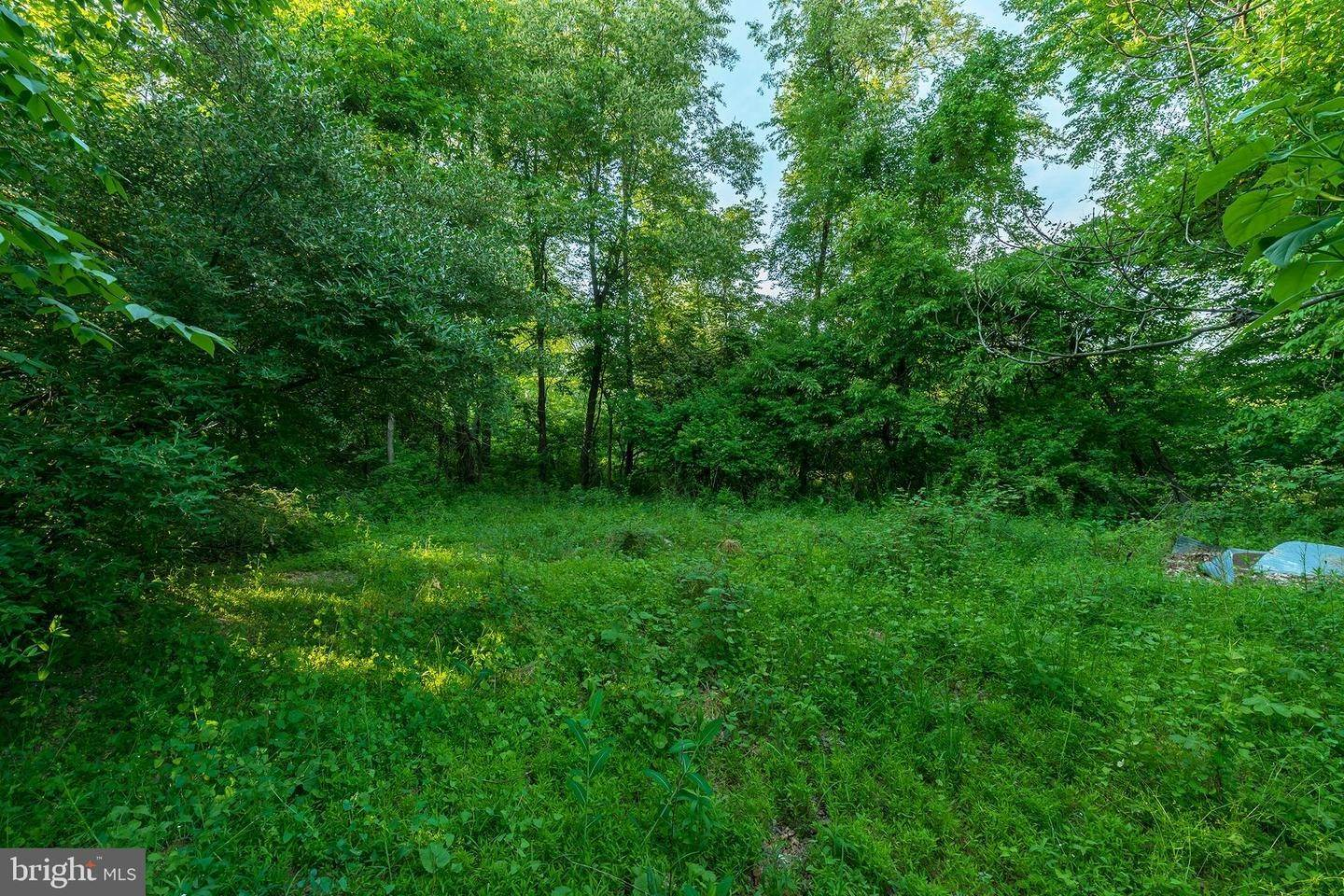 16. Residential for Sale at 1300 TEXTER MOUNTAIN Road Reinholds, Pennsylvania 17569 United States