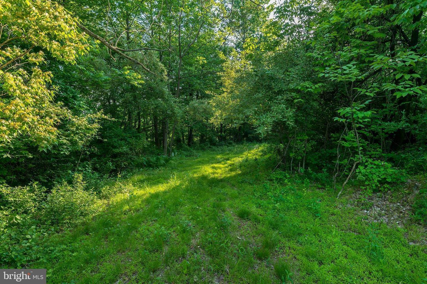 18. Residential for Sale at 1300 TEXTER MOUNTAIN Road Reinholds, Pennsylvania 17569 United States